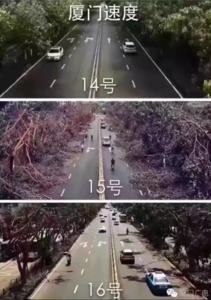 Xiamen-Speed