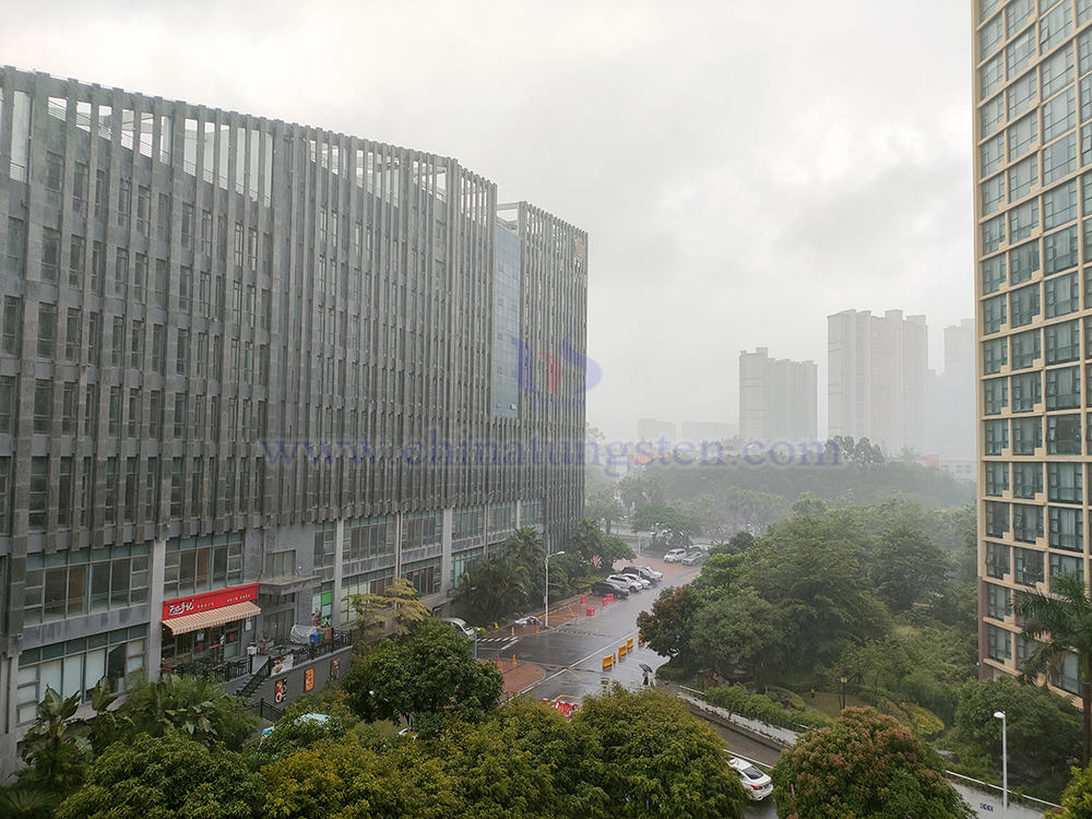 8月5日晨,被风吹斜的密雨,可惜手机像素不佳